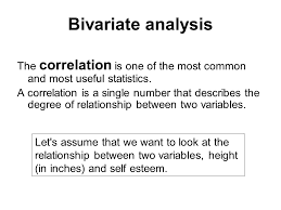 statistics essay writing