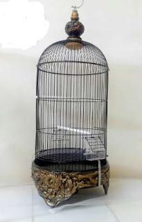 Sangkar yang Ideal Untuk Burung Lovebird - Pemeliharanan Burung Lovebird