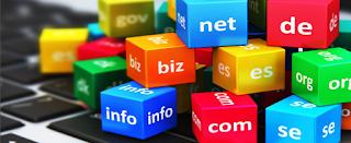 Contoh Domain dan Manfaatnya