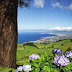 Азорские острова — Атлантида не из сказки