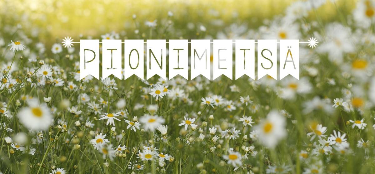 Pionimetsä