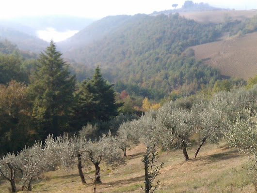 Umbria - why I can´t stop writing about it.