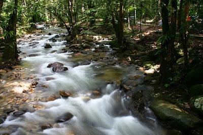 Tempat menarik di selangor Hutan Lipur Sungai Congkak