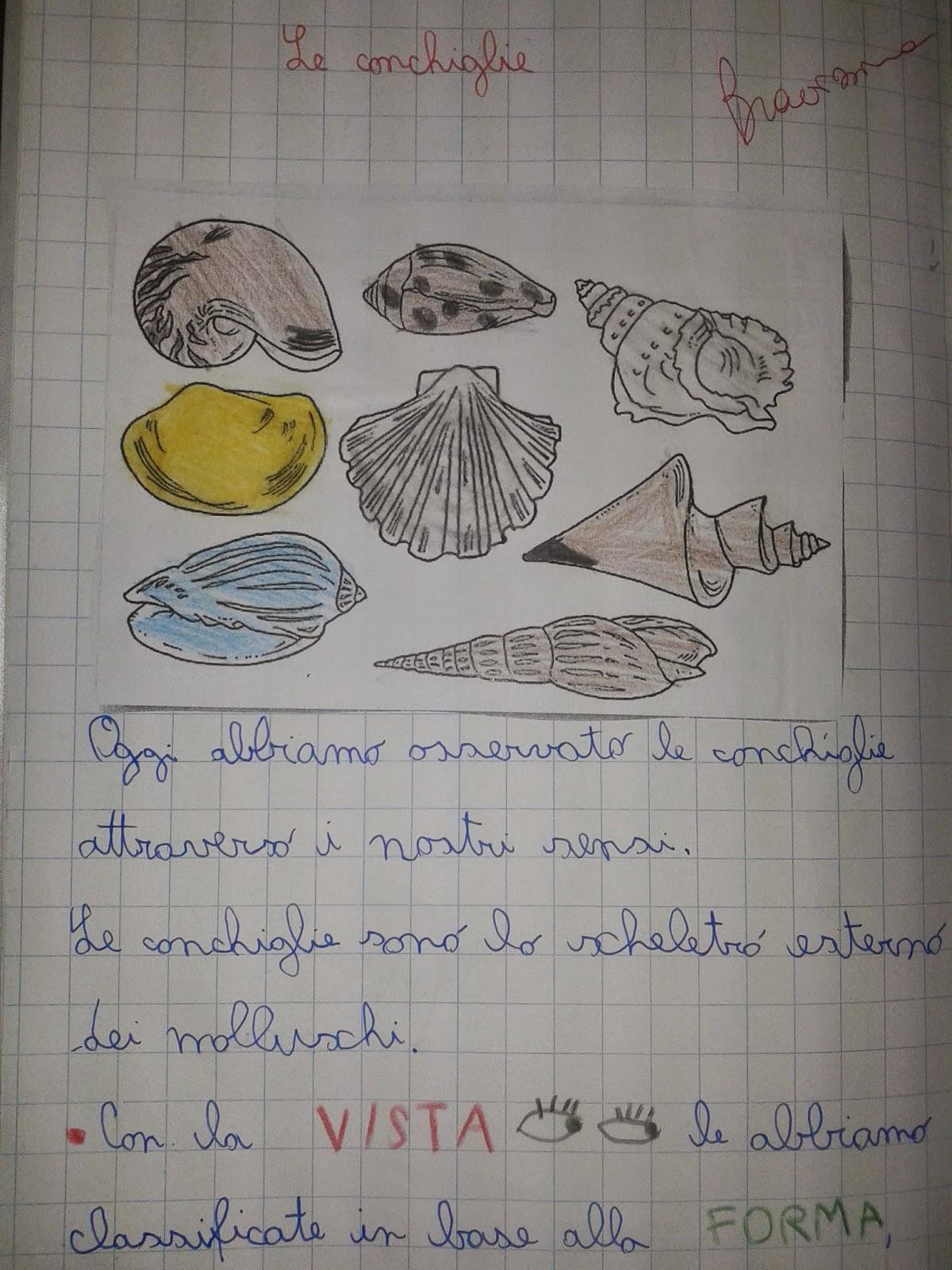 Ben noto LA MAESTRA MARIA TI SALUTA: Quaderno di scienze classe 2^ WE66