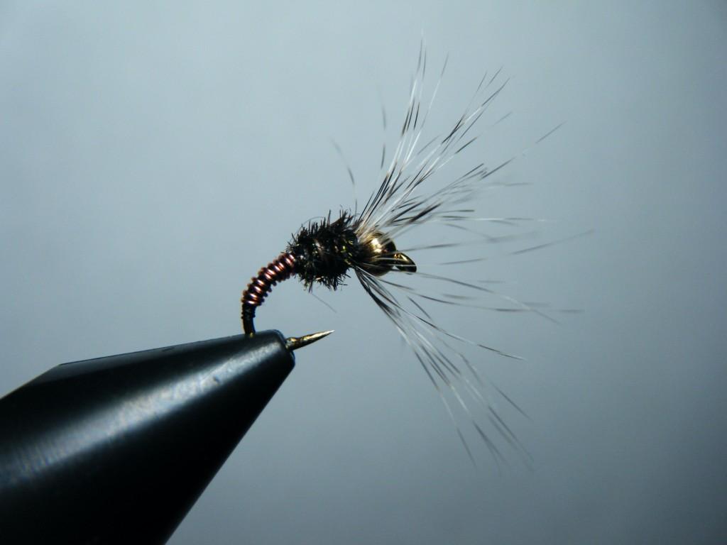 2317100a3b8 Troutrageous! Fly Fishing   Tenkara Blog  03 01 2012 - 04 01 2012