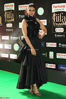 Rakul Preet Singh Sizzles in a Sleeveless Dress at IIFA Utsavam Awards 2017  Day 2  Exclusive 81.JPG