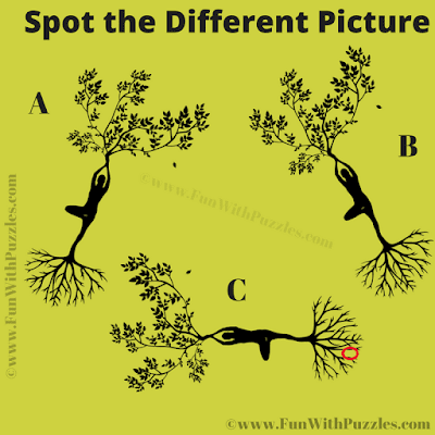 Answer of Spot the Different Visual Riddle for Adults