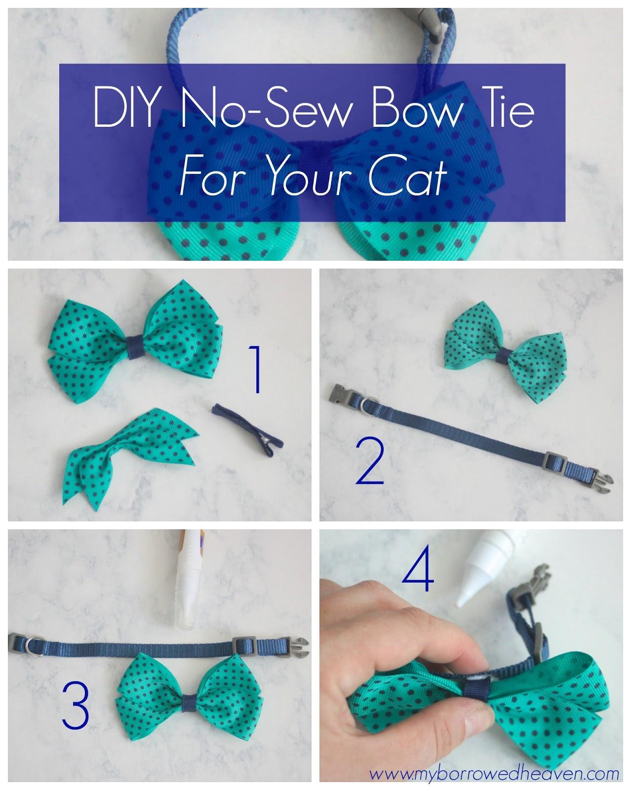 Diy Bow Tie   Midway Media