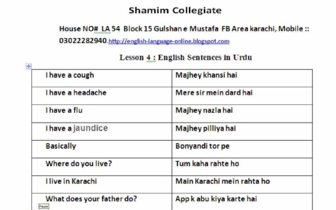 basic hindi sentences in english pdf