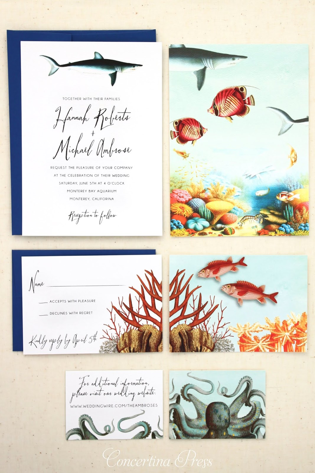 Ocean Wedding Invitation Set featuring a shark and a coral reef from Florida designer Concertina Press