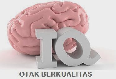 Tips Agar Otak Berkualitas