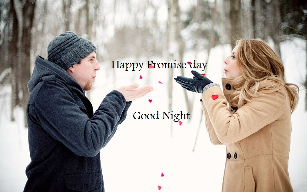 Promise Day Good Night Whatsapp Status DP