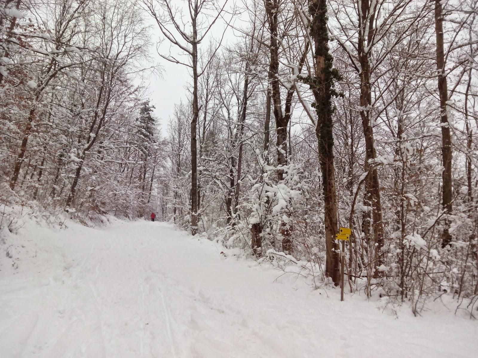 schnee im bergen