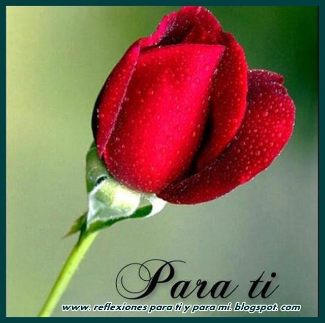 De Amor Conquistar Para Mujer Una Poemas