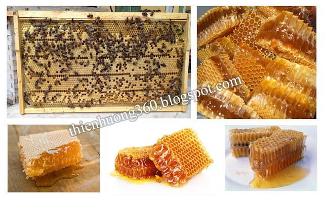 Đối với ong nuôi, kích thước bề ngang của sáp mật nhỏ và đều nhau