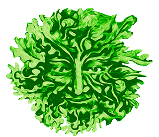 Iggys ALIVE & CULTURED Logo