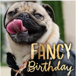 Tri cities on a dime fancy birthday doug the pug ecard at american fancy birthday doug the pug ecard at american greetings get a 7 day free trial subscription m4hsunfo
