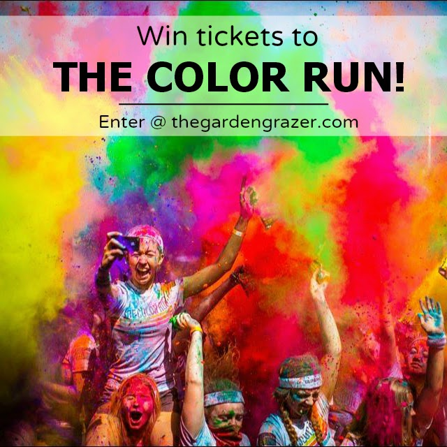 Jun 04, · The Color Run Kaleidoscope Tour has already kicked off, spreading happiness and rainbows all over the world. I'm excited to announce I have two pairs of tickets (4 total) to giveaway! Check the schedule here for upcoming cities near you and enter below to win!