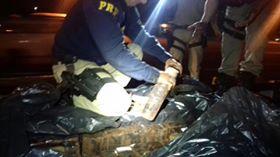 Polícia Rodoviária Federal apreende quase 500 Kg de maconha em Itapecerica da Serra