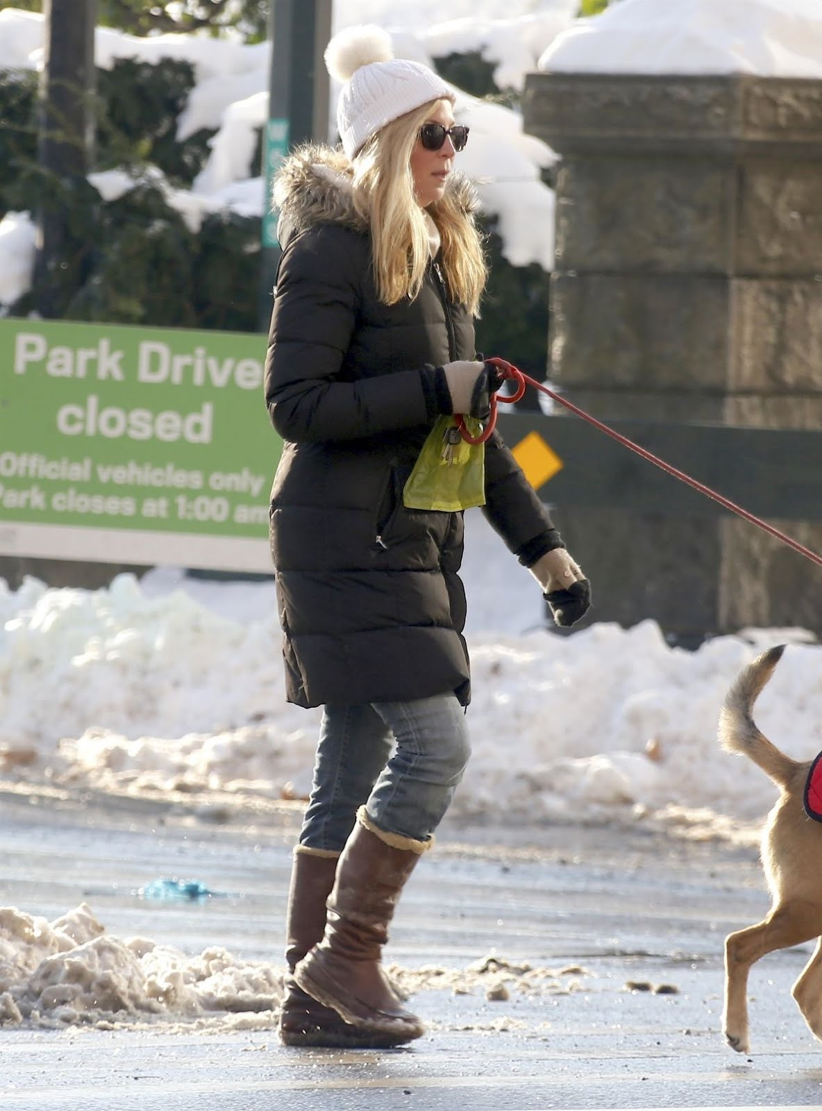 Jennifer Westfeldt Out With Her Dog In Central Park In New York 2018