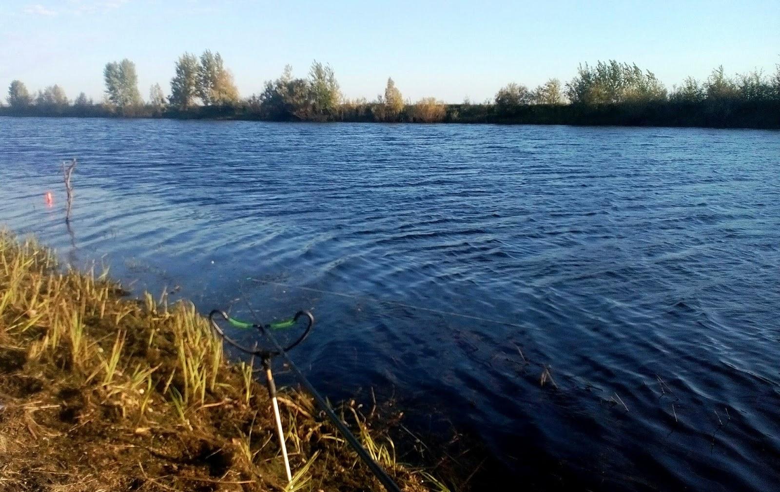 Река тугочайка омская область фото