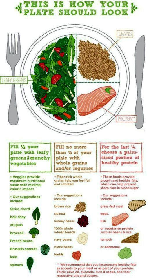 Bodybuilding And Fitness Recipes How Your Plate Should Look