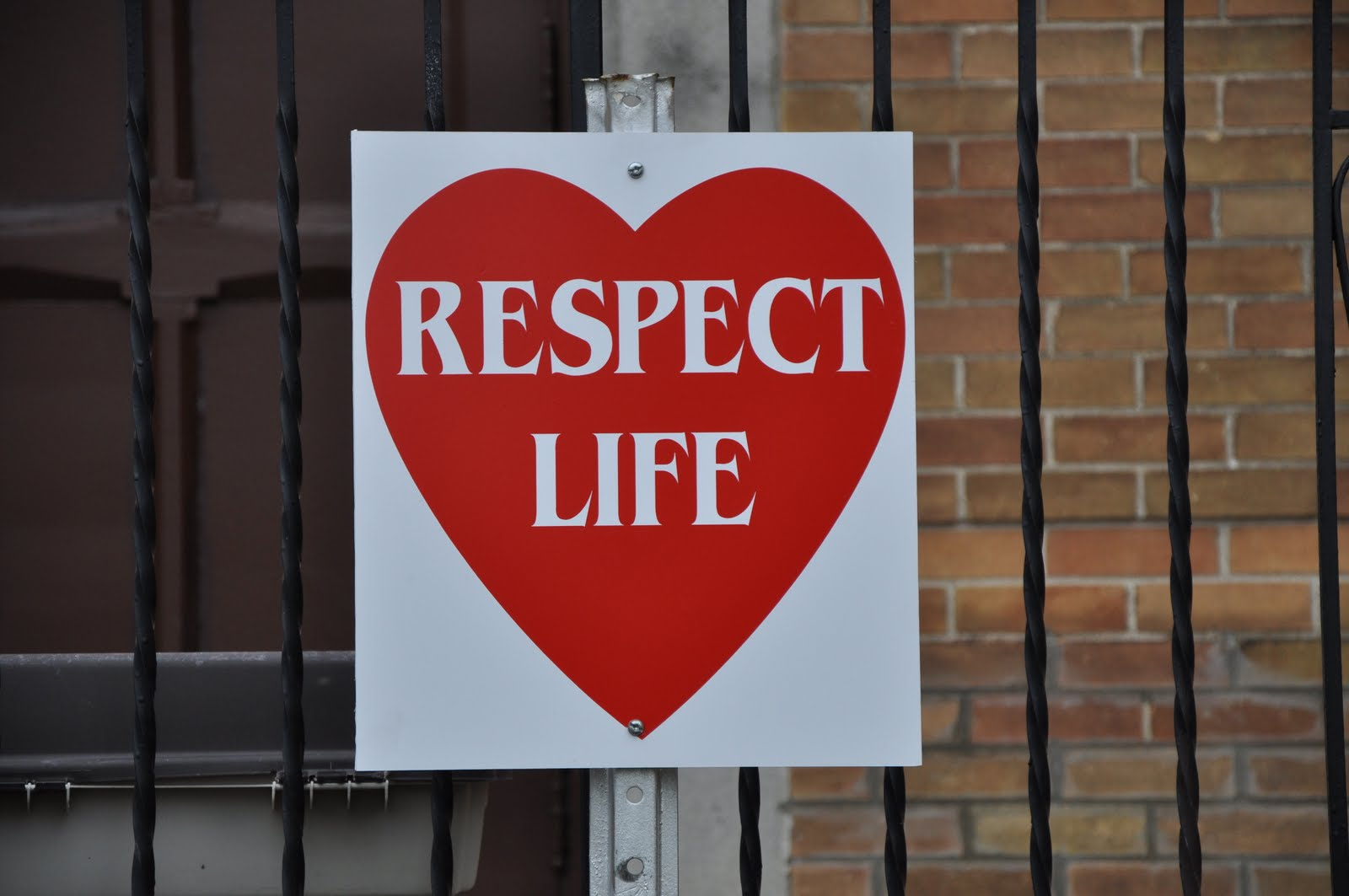 respect of life