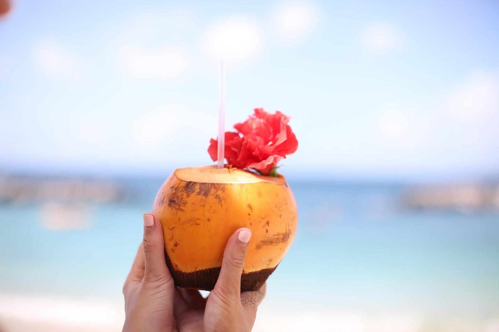 beach coconuts