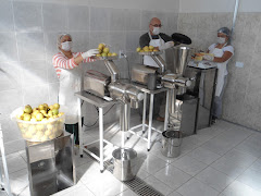 SALON EMPRENDEDOR KIT FABRICAR PULPAS DE FRUTAS