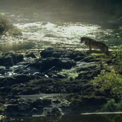 Far Cry 5 - Jacob Wallpaper Engine