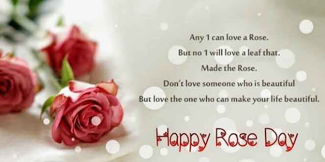 Happy Rose Day Facebook Cover Pictures and Greetings