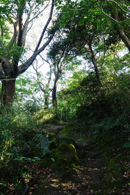 鎌倉アルプス・天園ハイキングコース