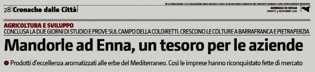 http://vitovitelli.blogspot.it/2016/11/mandorle-ad-enna-un-tesoro-per-le.html