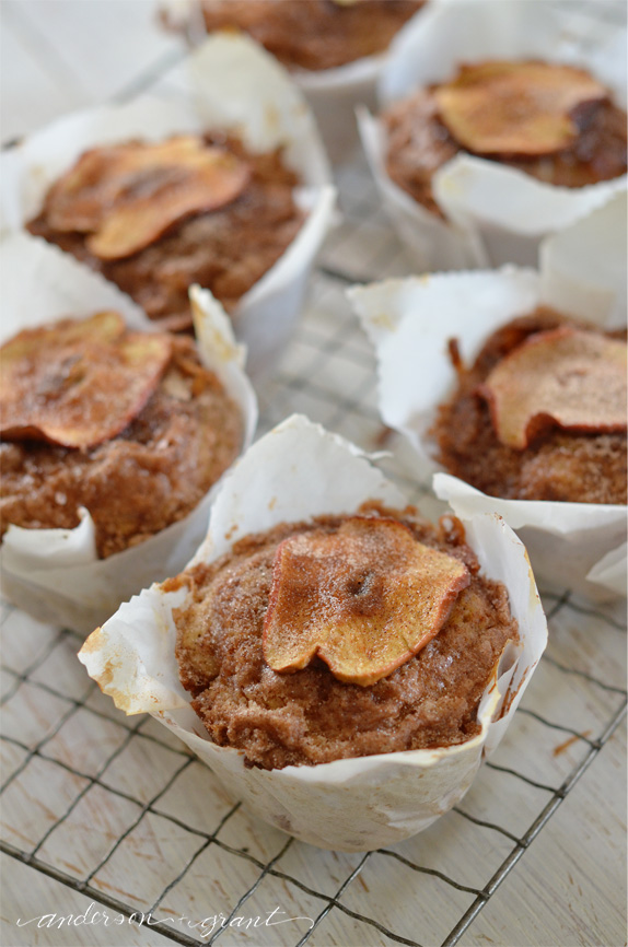 Cool apple muffins on wire rack | www.andersonandgrant.com