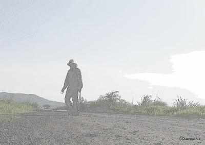 QuercusMx caminando entre Santa Cruz de las Flores y Buenavista