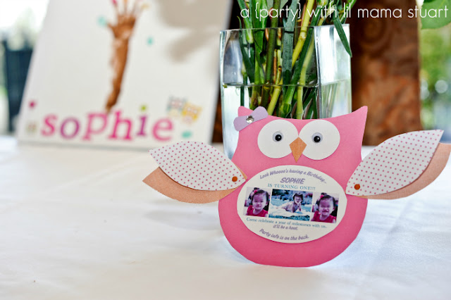 With Tips And Ideas To Make A Colorful Fun 1st Birthday Party Come Life Sophie Means Wise Since Everyone Associates Owls Being