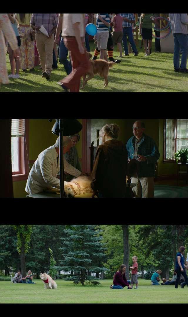 La razón de estar contigo (2017) HD 1080p y 720p Latino