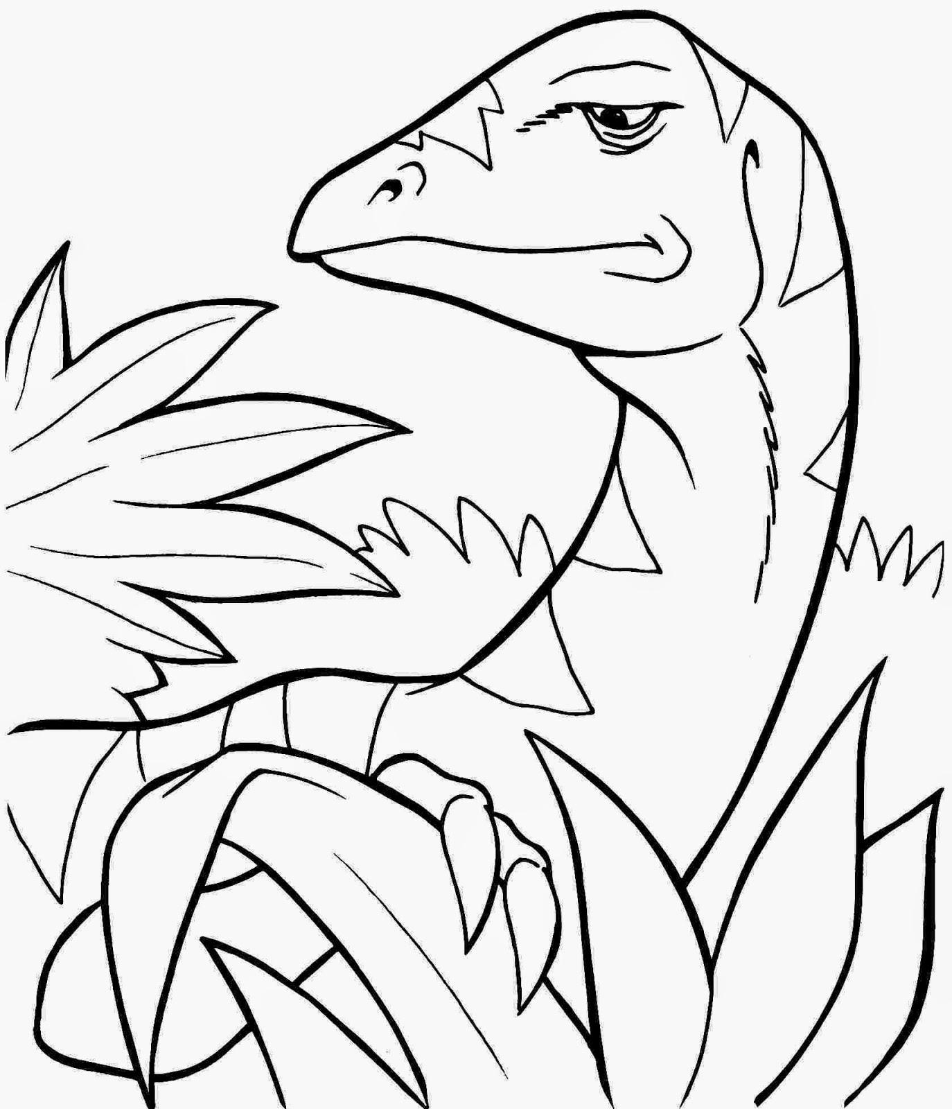 Wiring Diagram Dino