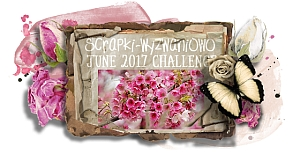 http://scrapki-wyzwaniowo.blogspot.sk/2017/06/june-2017-see-it-in-pink-1st-reveal.html