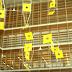 Metamorphosis: Ξεναγήσεις στο κτίριο της Εθνικής Βιβλιοθήκης της Ελλάδος