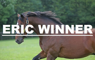Eric Winner Horse Racing Tips