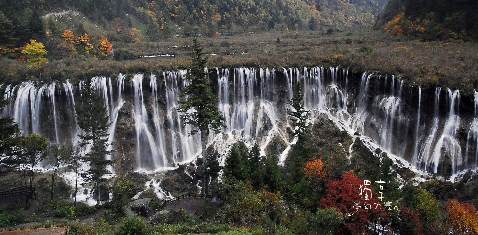 桌布下載: 中國四川省九寨溝諾日朗瀑布