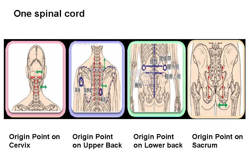 Healthcare wellness family concepts origin point therapy introduction by administering the antui techniques on the origin pain point of the op root cause ones illness can be prevented and improved ccuart Choice Image