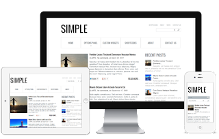 Simple WordPress Theme:  Real Simple and Classy Look