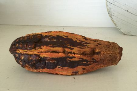 gourd from bag of potpourri
