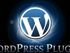 WHAT AND USE PLUGIN WORDPRESS?