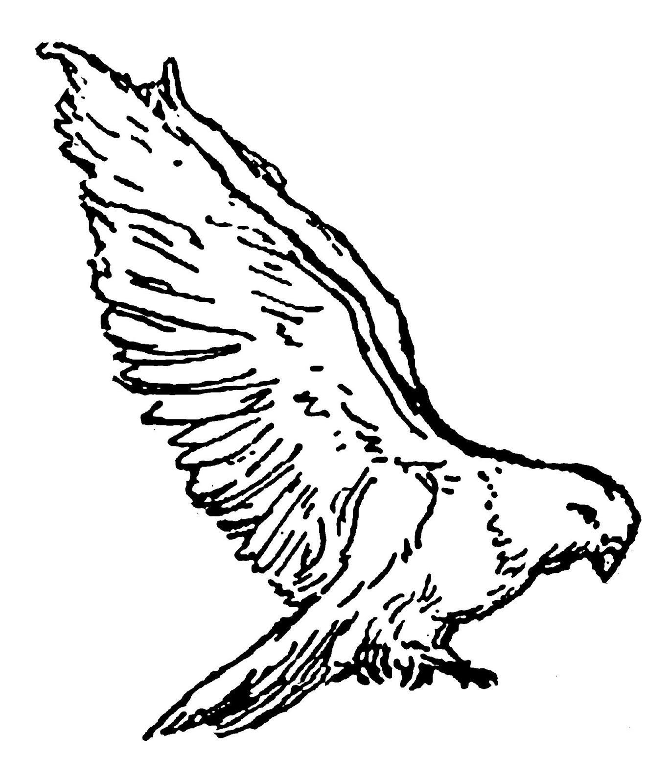 Digital Stamp Design Stock Bird Illustrations Digital
