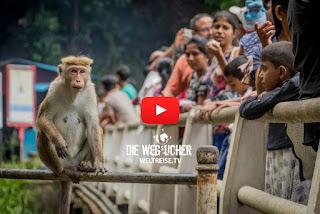 Ravana Falls Wasserfall in Ella, Sri Lanka, Weltreise Die Wegsucher