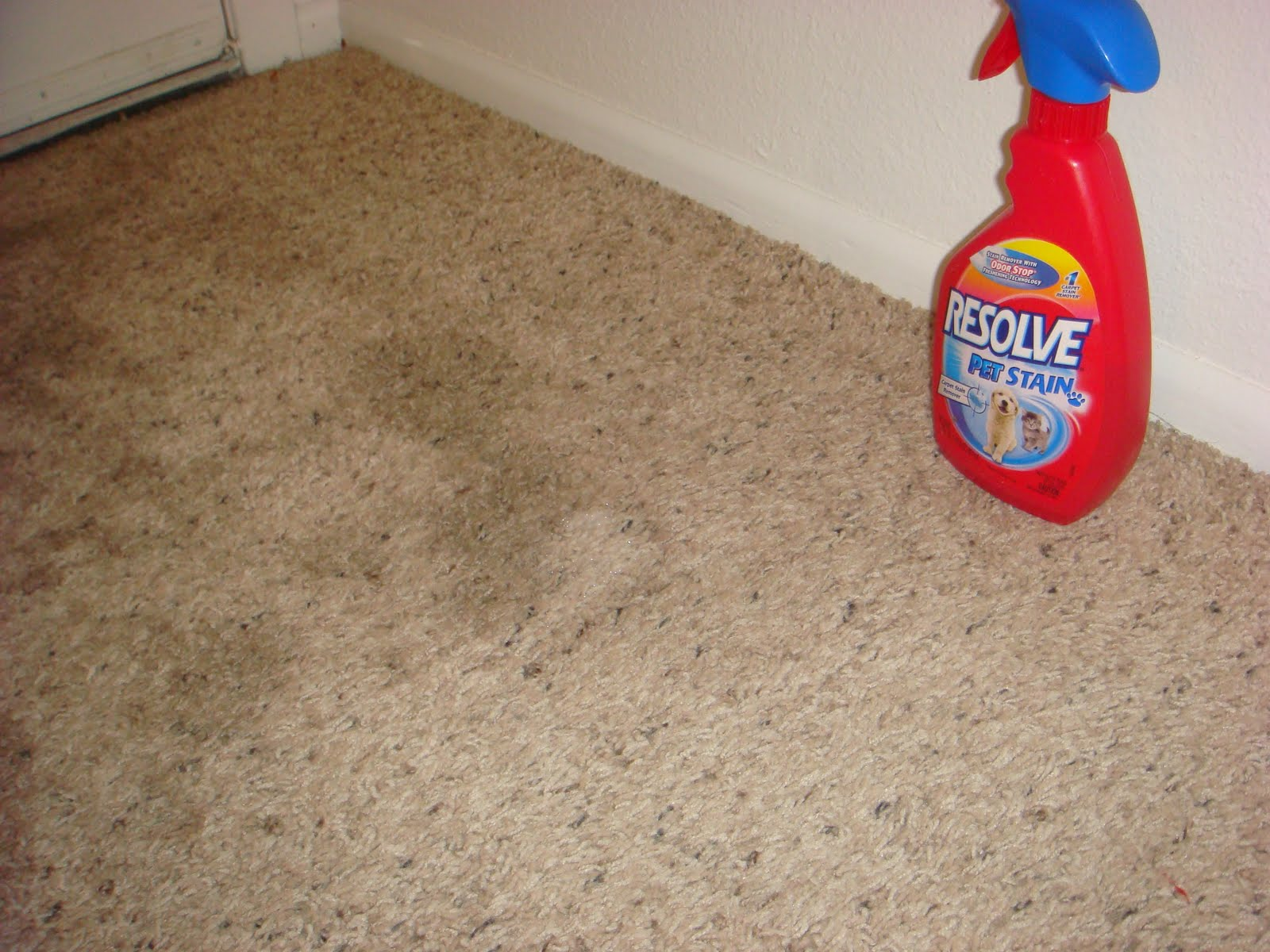Everyday Rustic Vinegar And Baking Soda Tackle The Carpet