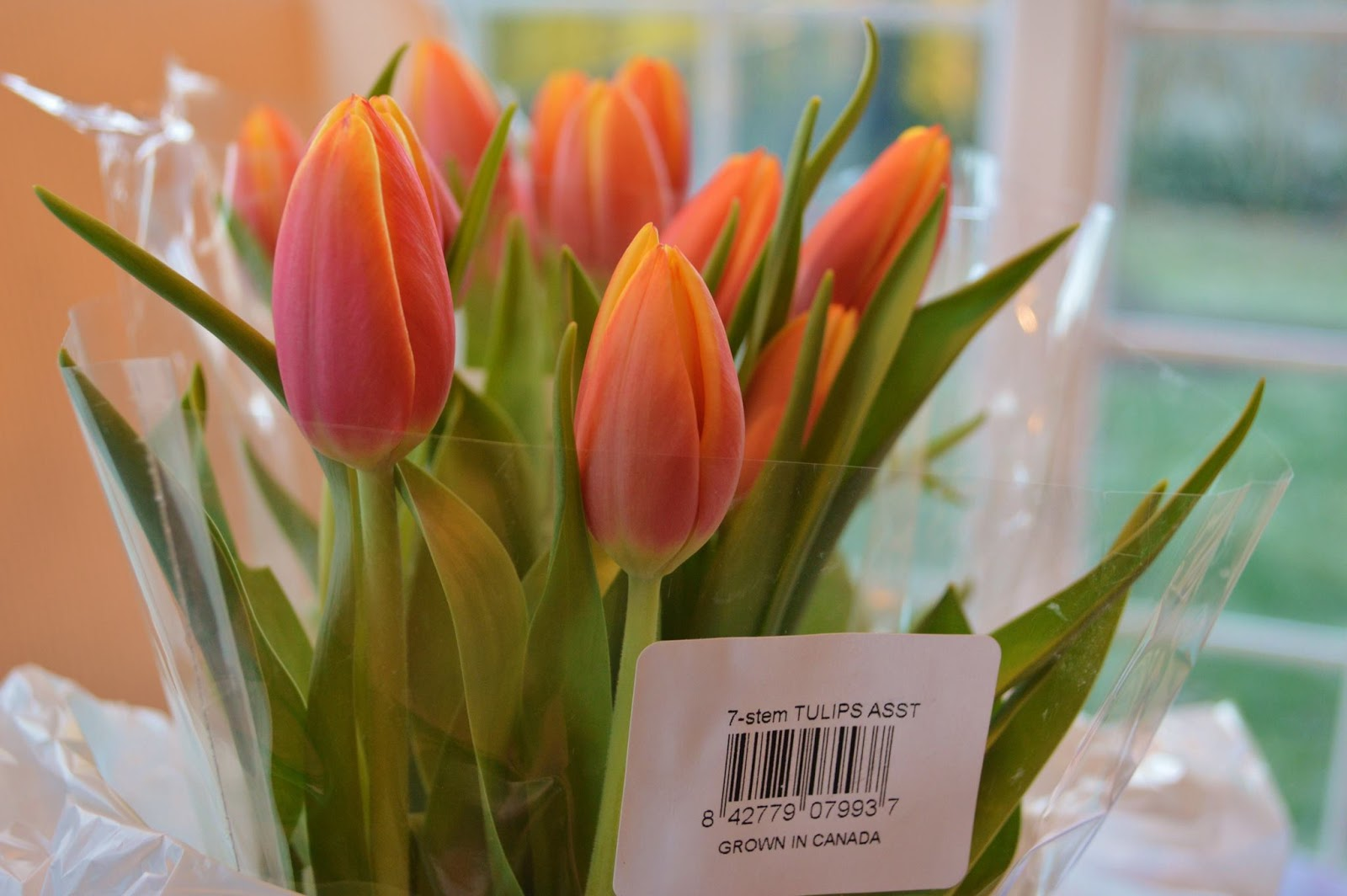 Tulips Are A Cheap Thrill